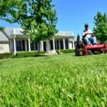 Pravilnom košnjom trave do prekrasnog travnjaka